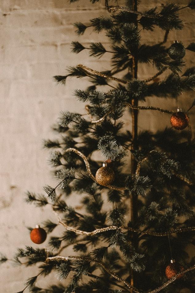 Das Tannenbaum.Mit Dem Alten Tannenbaum Das Wohnzimmer Beheizen Magazin Wamiso Com